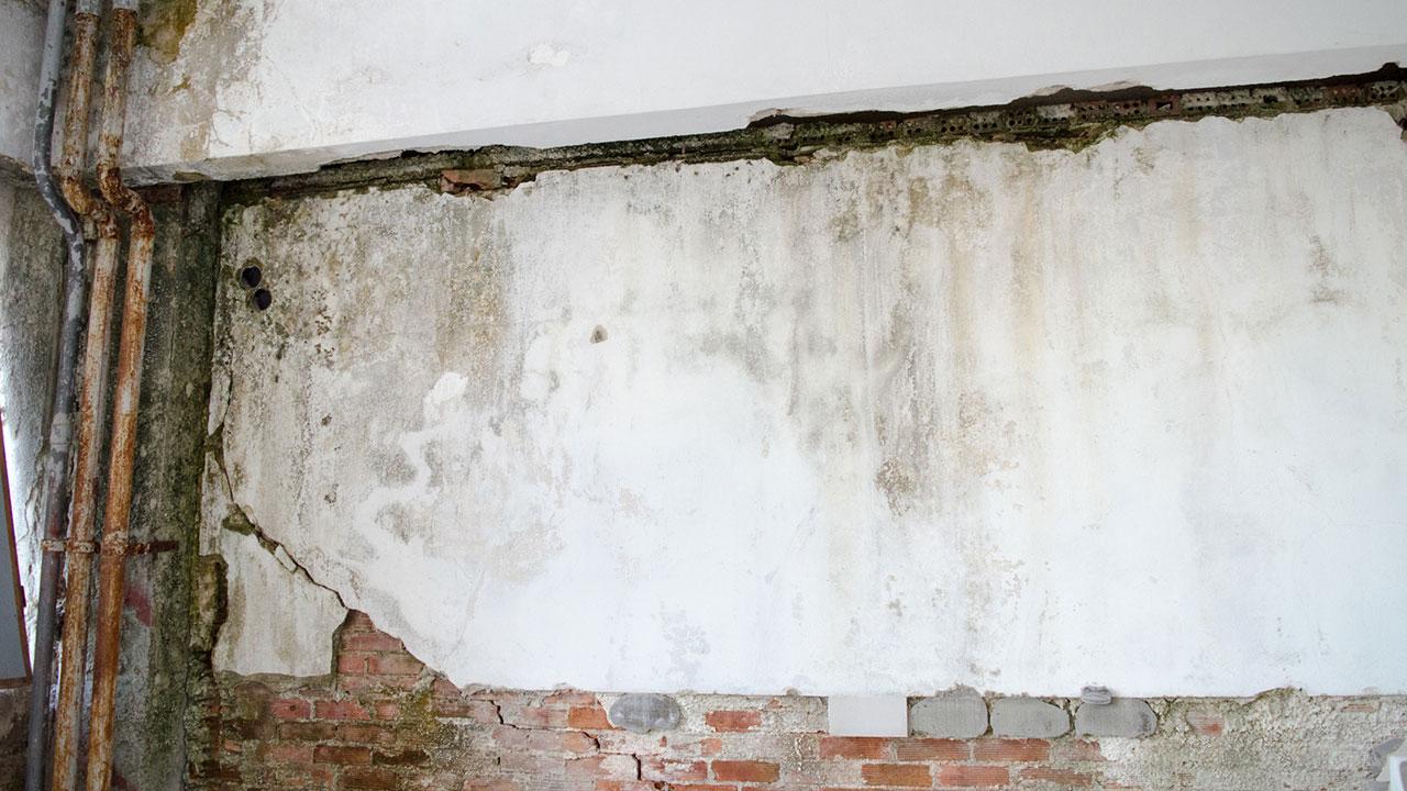 deutschlands feuchte keller sanieren mit zusch ssen in f rderungen deutschland. Black Bedroom Furniture Sets. Home Design Ideas