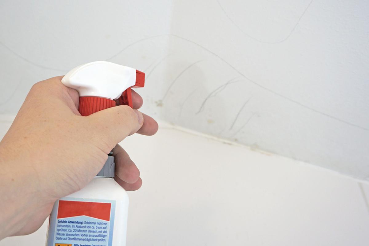 Schimmel an der Decke beseitigen   Anleitung & Tipps vom Maler ...