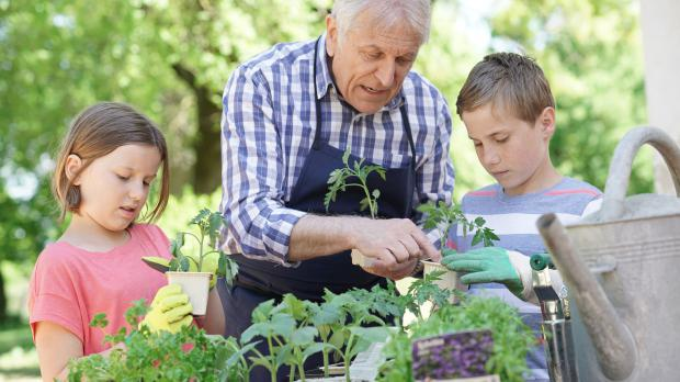 Erwachsener erklärt Kindern die Gartenarbeit