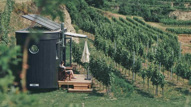 Tiny House zwischen Weinstöcken