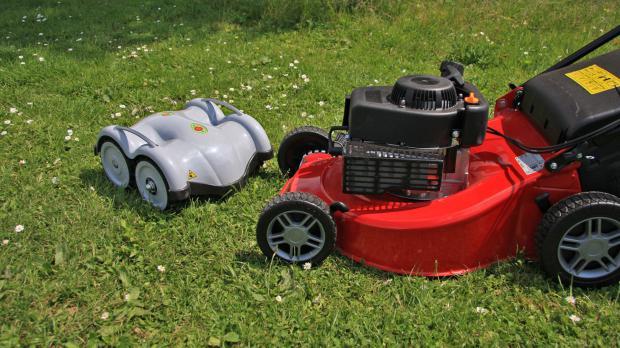 Rasenmäher im Miniformat