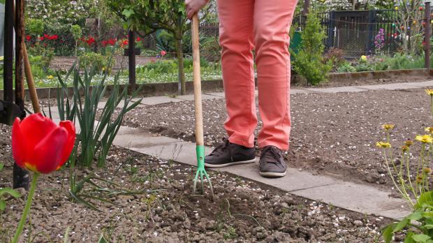 Boden mit Grubber feinkrümelig bearbeiten