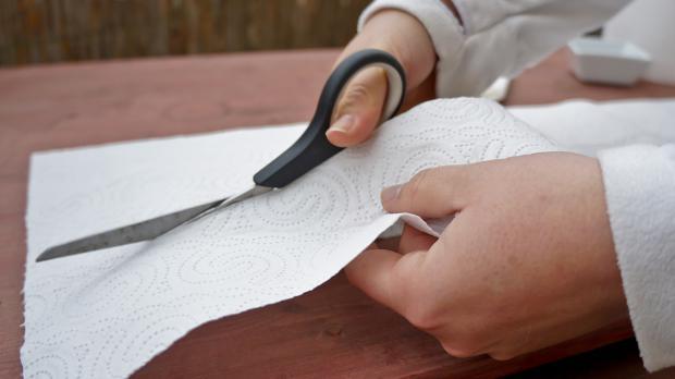 aussaat vorbereiten saatscheiben und saatband selber machen anleitung. Black Bedroom Furniture Sets. Home Design Ideas
