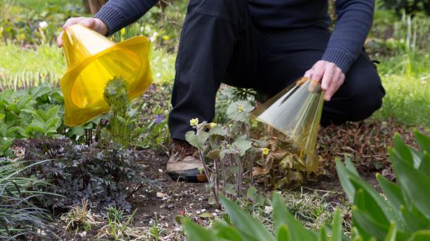 Schutzhauben für kleinere Pflanzen