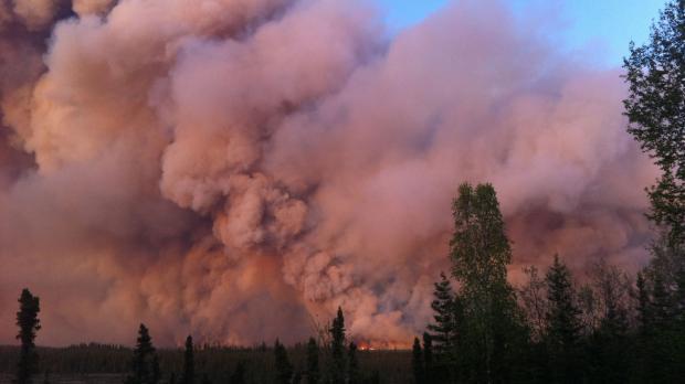 Waldbrand setzt CO2 frei