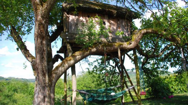 Baumhaus in einem kräftigen Apfelbaum