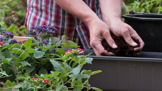 Blumenkasten mit Erde befüllen