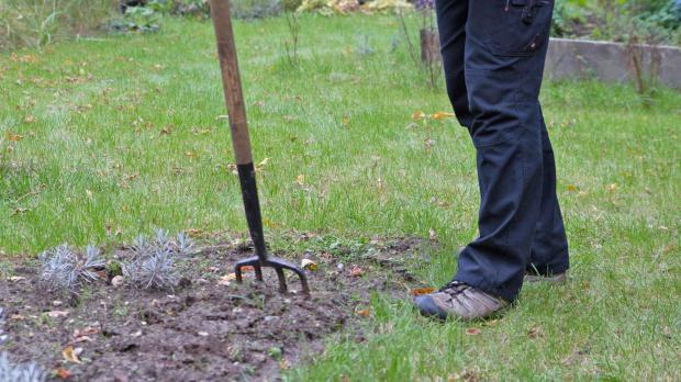 Der garten im oktober tipps tricks vom g rtner for Boden umgraben
