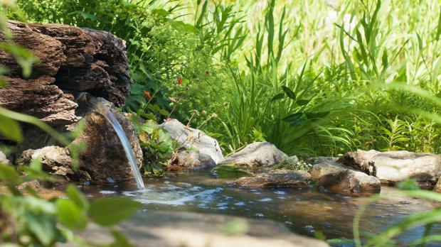 Wasserspiele im Gartenteich