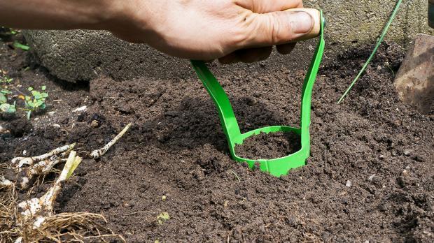 Mit Zwiebelpflanzer Pflanzloch für Blumenzwiebeln setzen