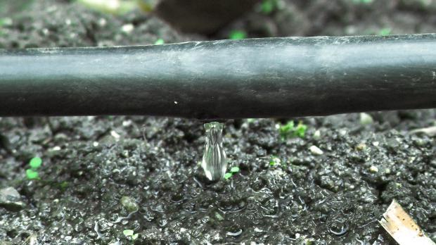 Reparierte Tröpfchenbewässerung