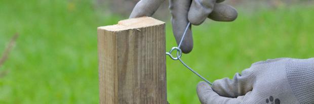 Rankhilfe für Brombeeren bauen