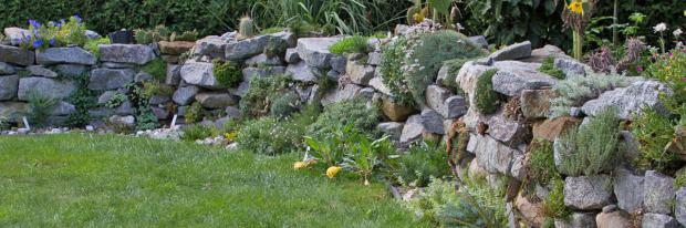 Begrünte Trockenmauer im eigenen Garten