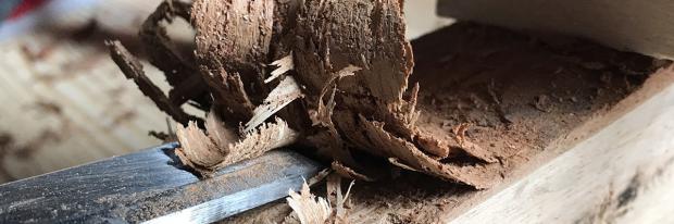 Rinde wird vom Kantholz mit dem Stechbeitel entfernt