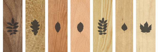 Verschiedene Holzsorten nebeneinander