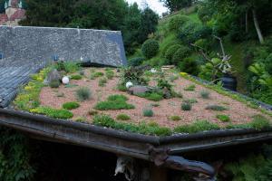 Dachbegrünung: 10 Pflanzen für jedes Gründach