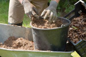 Humus selber machen – auch ohne Kompost