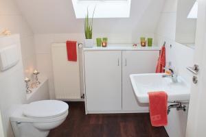 Wie wähle ich den richtigen WC-Sitz aus?