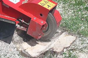 Baumstumpf entfernen - Die Wurzelstockfräse im Einsatz