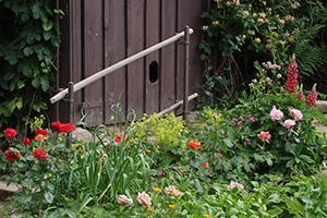 Der Naturgarten - Elemente und Kriterien