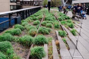 So gelingt der Garten im Industrial-Style