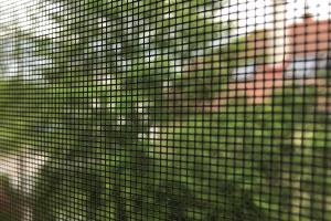 Insektenschutz reinigen – do it yourself