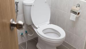 ratgeber f r mehr komfort und sparsamkeit toilette. Black Bedroom Furniture Sets. Home Design Ideas