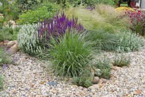 steppenpflanzen und kiesgarten pflanzen garten. Black Bedroom Furniture Sets. Home Design Ideas