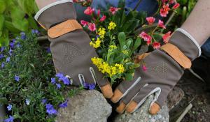 steingarten anlegen anleitung f r mini steingarten anleitung tipps vom g rtner garten und. Black Bedroom Furniture Sets. Home Design Ideas