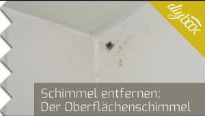 Embedded thumbnail for Schimmel beseitigen - Schimmel an der Decke