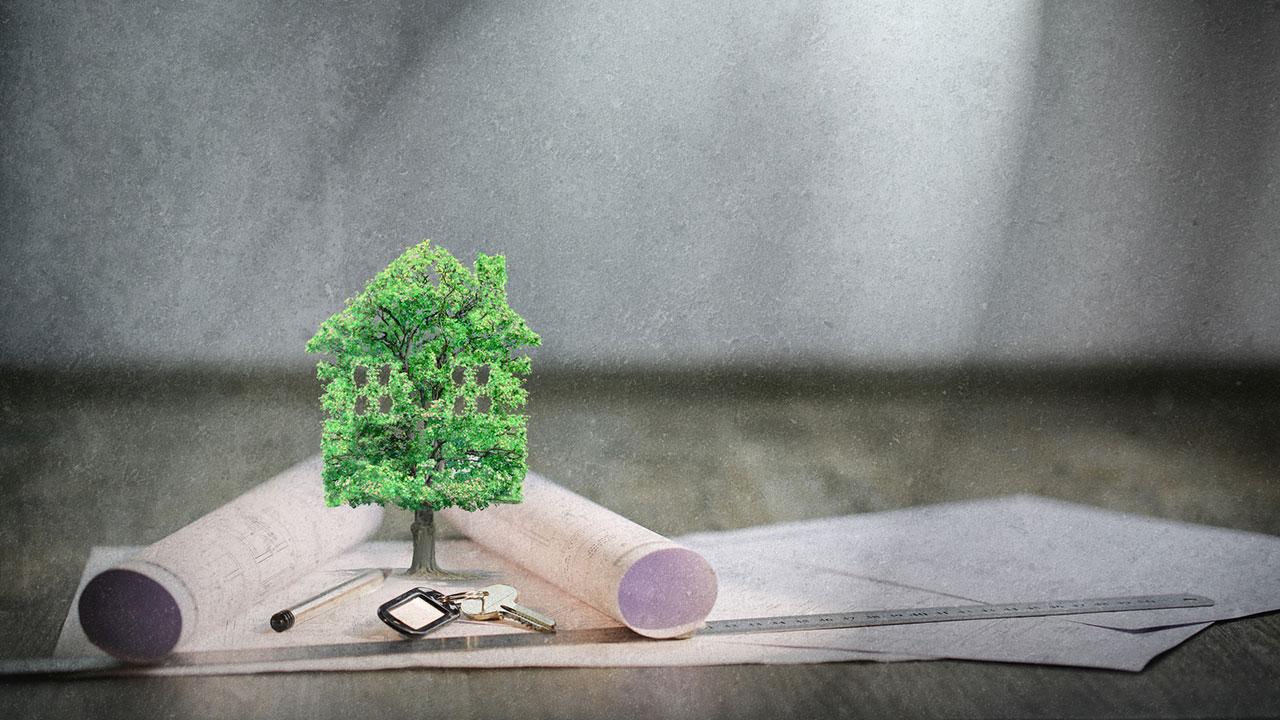 neuer ratgeber f r gesundes bauen und wohnen in ratgeber. Black Bedroom Furniture Sets. Home Design Ideas